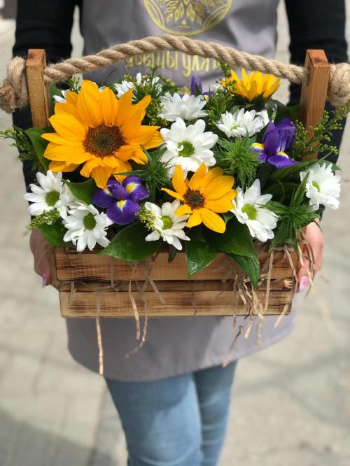 Цветы в ящике«Катрина»