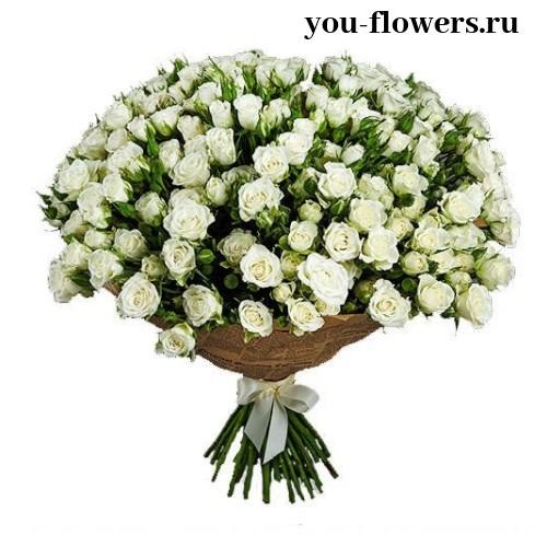 Букет из 31 кустовой белой розы