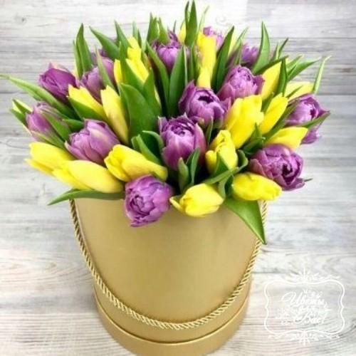 Коробка из 51 тюльпана